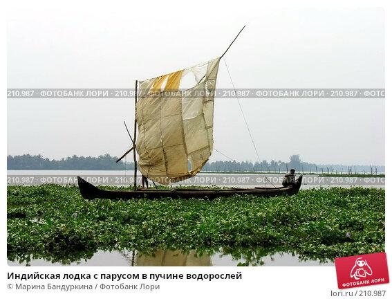 Индийская лодка с парусом в пучине водорослей, фото № 210987, снято 20 ноября 2005 г. (c) Марина Бандуркина / Фотобанк Лори