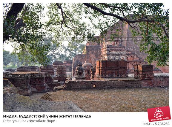 Купить «Индия. Буддистский университет Наланда», эксклюзивное фото № 5728259, снято 15 октября 2019 г. (c) Staryh Luiba / Фотобанк Лори