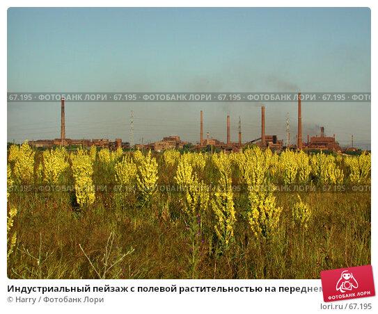 Индустриальный пейзаж с полевой растительностью на переднем плане, фото № 67195, снято 30 июня 2004 г. (c) Harry / Фотобанк Лори
