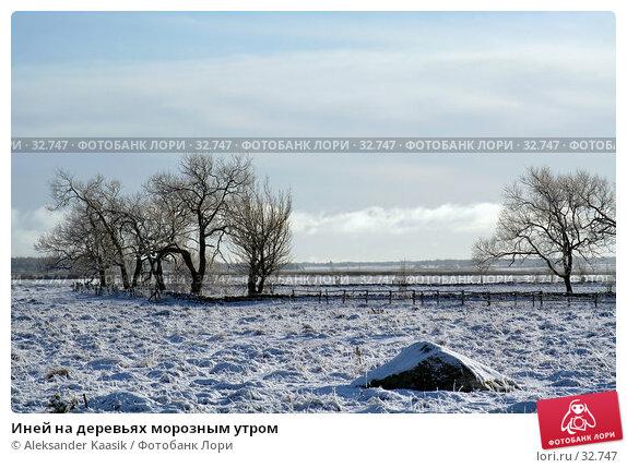 Иней на деревьях морозным утром, фото № 32747, снято 29 марта 2017 г. (c) Aleksander Kaasik / Фотобанк Лори