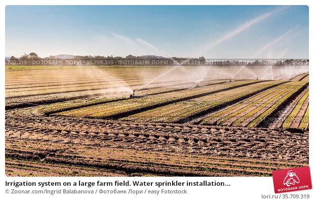 Irrigation system on a large farm field. Water sprinkler installation... Стоковое фото, фотограф Zoonar.com/Ingrid Balabanova / easy Fotostock / Фотобанк Лори