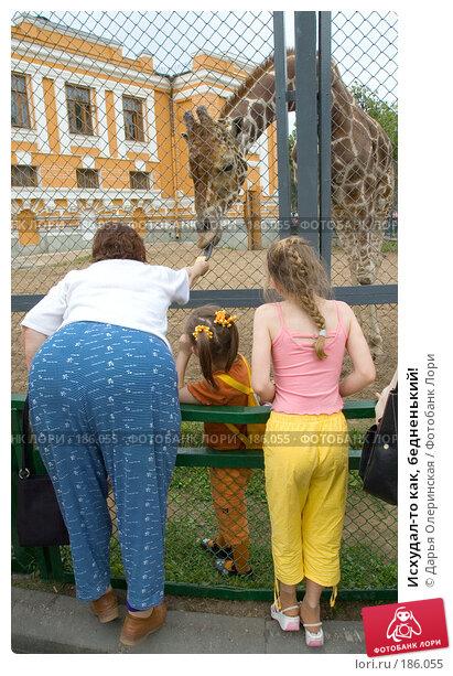 Купить «Исхудал-то как, бедненький!», фото № 186055, снято 4 июня 2006 г. (c) Дарья Олеринская / Фотобанк Лори