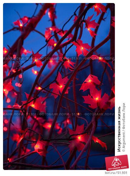 Искусственная жизнь, фото № 51931, снято 5 января 2007 г. (c) Argument / Фотобанк Лори