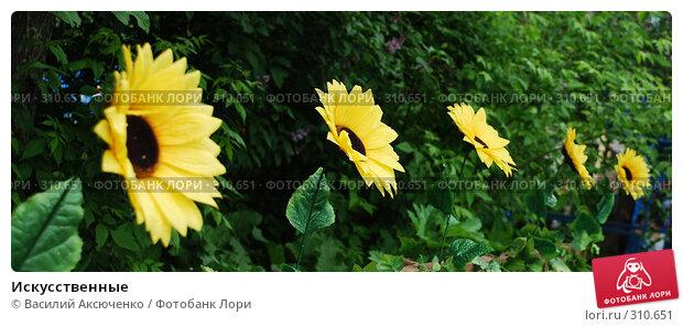 Искусственные, фото № 310651, снято 31 мая 2008 г. (c) Василий Аксюченко / Фотобанк Лори