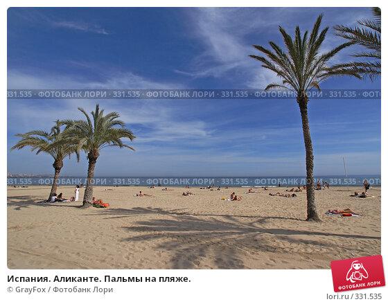 Испания. Аликанте. Пальмы на пляже., фото № 331535, снято 28 июля 2017 г. (c) GrayFox / Фотобанк Лори