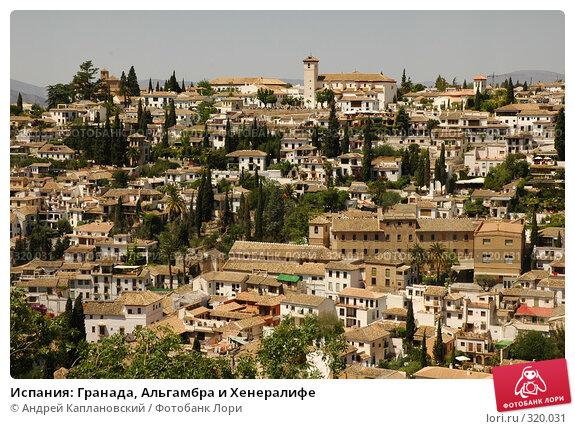 Испания: Гранада, Альгамбра и Хенералифе, фото № 320031, снято 1 мая 2008 г. (c) Андрей Каплановский / Фотобанк Лори