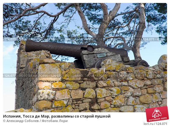 Испания, Тосса де Мар, развалины со старой пушкой, фото № 124071, снято 20 августа 2007 г. (c) Александр Соболев / Фотобанк Лори