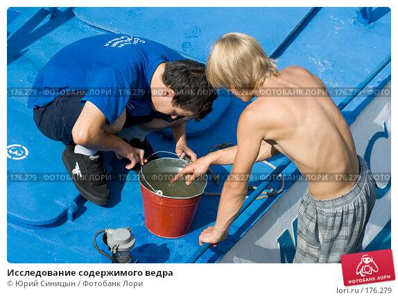 Исследование содержимого ведра, фото № 176279, снято 24 августа 2007 г. (c) Юрий Синицын / Фотобанк Лори