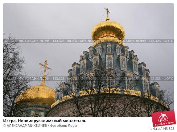 Истра. Новоиерусалимский монастырь, фото № 143323, снято 8 апреля 2007 г. (c) АЛЕКСАНДР МИХЕИЧЕВ / Фотобанк Лори