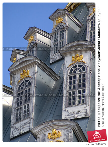Истра. Воскресенский собор Ново-Иерусалимского монастыря. Купол. Вид с запада, фото № 240655, снято 29 марта 2008 г. (c) Julia Nelson / Фотобанк Лори