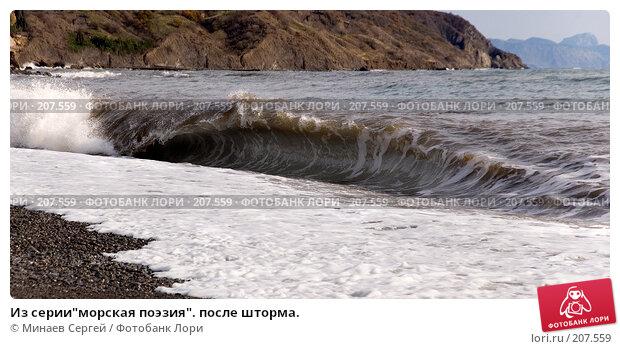 """Из серии""""морская поэзия"""". после шторма., фото № 207559, снято 20 ноября 2007 г. (c) Минаев Сергей / Фотобанк Лори"""
