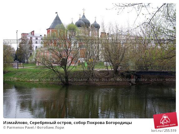 Измайлово, Серебряный остров, собор Покрова Богородицы, фото № 255519, снято 16 апреля 2008 г. (c) Parmenov Pavel / Фотобанк Лори