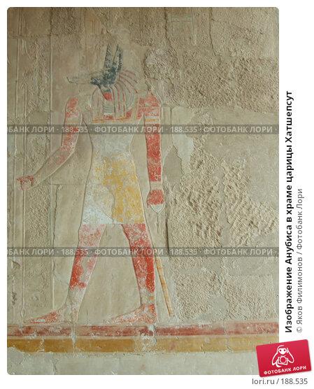 Изображение Анубиса в храме царицы Хатшепсут, фото № 188535, снято 15 января 2008 г. (c) Яков Филимонов / Фотобанк Лори