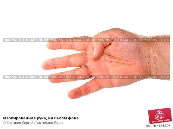 Изолированная рука, на белом фоне, фото № 184595, снято 16 декабря 2007 г. (c) Катыкин Сергей / Фотобанк Лори
