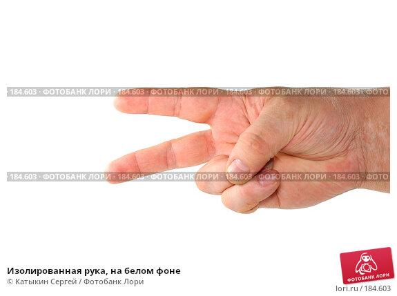 Изолированная рука, на белом фоне, фото № 184603, снято 16 декабря 2007 г. (c) Катыкин Сергей / Фотобанк Лори