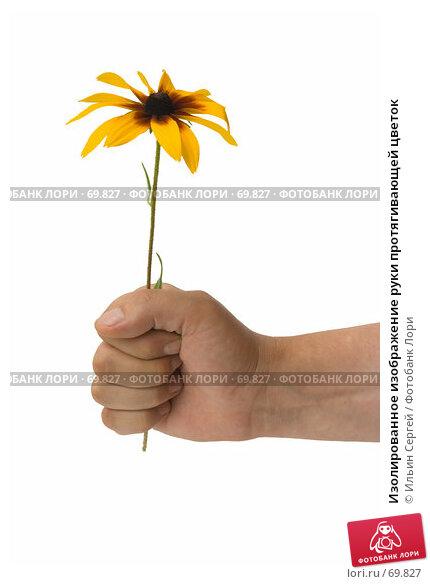 Изолированное изображение руки протягивающей цветок, фото № 69827, снято 7 августа 2007 г. (c) Ильин Сергей / Фотобанк Лори