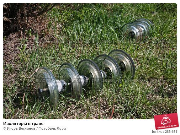 Изоляторы в траве, фото № 285651, снято 8 мая 2008 г. (c) Игорь Веснинов / Фотобанк Лори