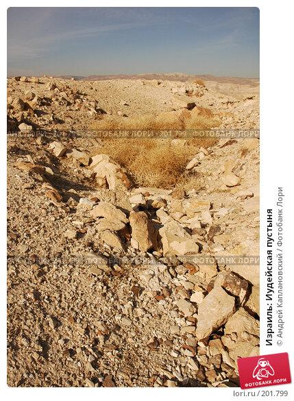 Израиль: Иудейская пустыня, фото № 201799, снято 31 декабря 2007 г. (c) Андрей Каплановский / Фотобанк Лори