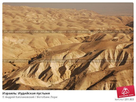 Купить «Израиль: Иудейская пустыня», фото № 201803, снято 31 декабря 2007 г. (c) Андрей Каплановский / Фотобанк Лори