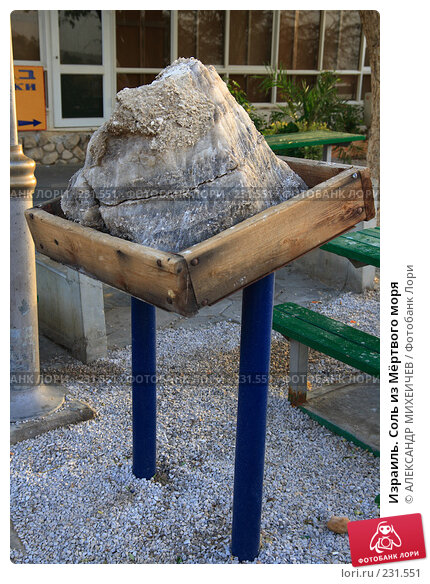 Израиль. Соль из Мёртвого моря, фото № 231551, снято 22 февраля 2008 г. (c) АЛЕКСАНДР МИХЕИЧЕВ / Фотобанк Лори
