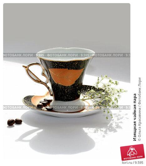 Купить «Изящная чайная пара», фото № 9595, снято 27 июня 2006 г. (c) Ольга Красавина / Фотобанк Лори