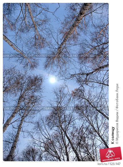 К солнцу, фото № 123147, снято 21 октября 2007 г. (c) Мударисов Вадим / Фотобанк Лори