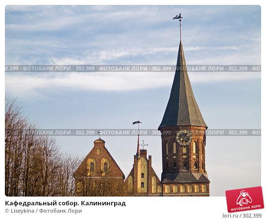 Купить «Кафедральный собор. Калининград», фото № 302399, снято 30 декабря 2007 г. (c) Liseykina / Фотобанк Лори