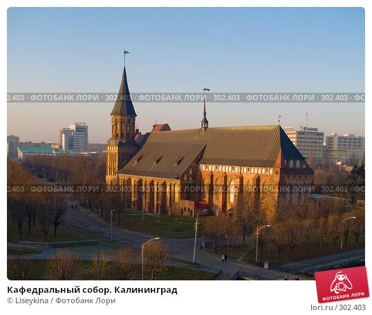 Кафедральный собор. Калининград, фото № 302403, снято 30 декабря 2007 г. (c) Liseykina / Фотобанк Лори