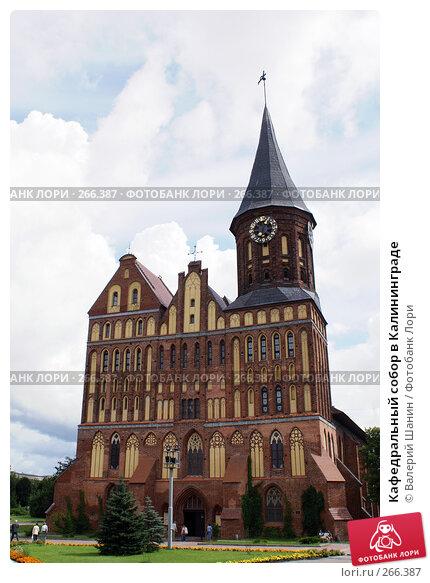 Кафедральный собор в Калининграде, фото № 266387, снято 31 июля 2007 г. (c) Валерий Шанин / Фотобанк Лори