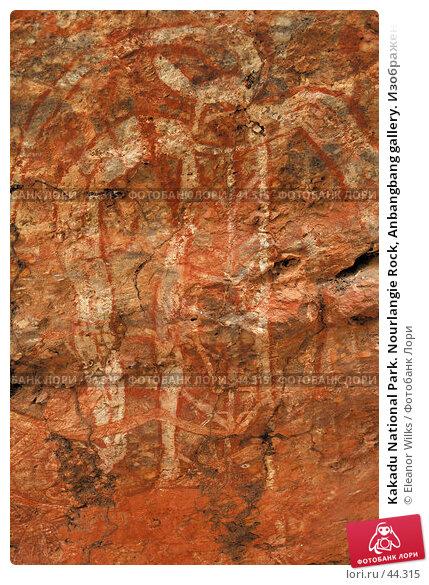 Kakadu National Park. Nourlangie Rock, Anbangbang gallery. Изображение человека в ритуальном наряде, фото № 44315, снято 4 июня 2007 г. (c) Eleanor Wilks / Фотобанк Лори