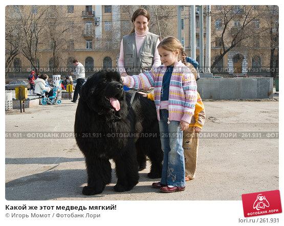 Какой же этот медведь мягкий!, фото № 261931, снято 5 апреля 2008 г. (c) Игорь Момот / Фотобанк Лори