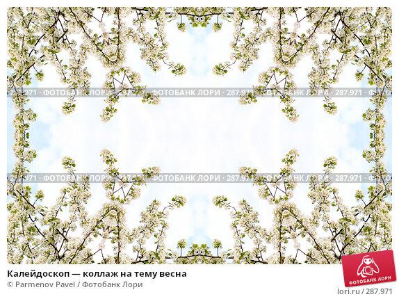 Калейдоскоп — коллаж на тему весна, фото № 287971, снято 10 мая 2008 г. (c) Parmenov Pavel / Фотобанк Лори