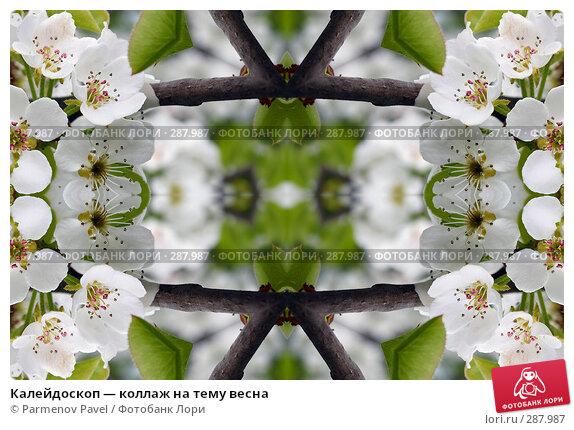 Купить «Калейдоскоп — коллаж на тему весна», фото № 287987, снято 10 мая 2008 г. (c) Parmenov Pavel / Фотобанк Лори