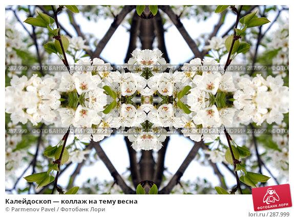 Калейдоскоп — коллаж на тему весна, фото № 287999, снято 10 мая 2008 г. (c) Parmenov Pavel / Фотобанк Лори