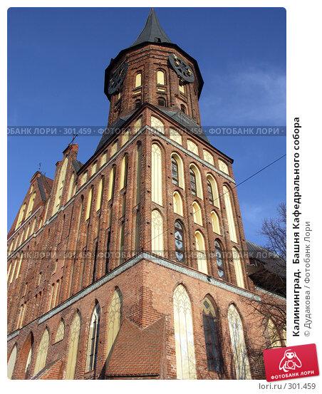 Калининград.  Башня Кафедрального собора, фото № 301459, снято 25 января 2007 г. (c) Дудакова / Фотобанк Лори