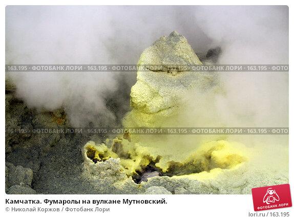 Камчатка. Фумаролы на вулкане Мутновский., фото № 163195, снято 27 июня 2007 г. (c) Николай Коржов / Фотобанк Лори