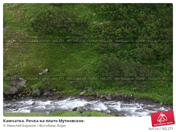 Камчатка. Речка на плато Мутновское., фото № 162271, снято 26 июня 2007 г. (c) Николай Коржов / Фотобанк Лори