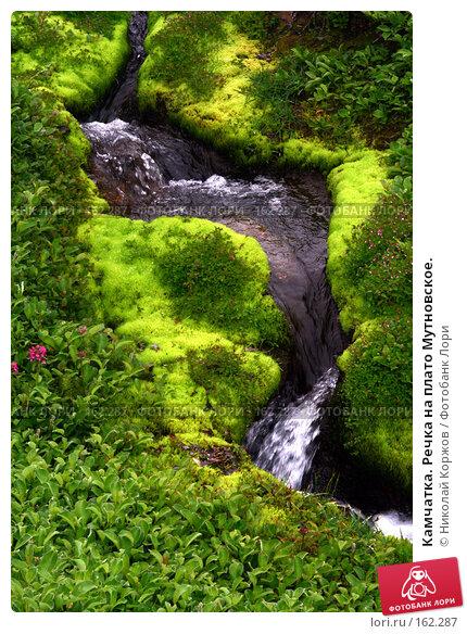 Камчатка. Речка на плато Мутновское., фото № 162287, снято 27 июня 2007 г. (c) Николай Коржов / Фотобанк Лори