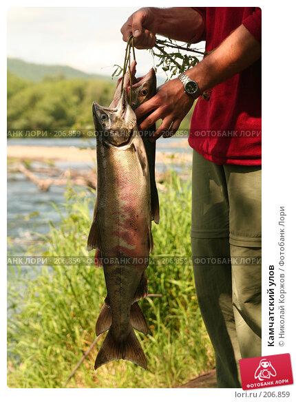 Купить «Камчатский улов», фото № 206859, снято 3 августа 2007 г. (c) Николай Коржов / Фотобанк Лори