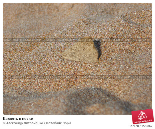Камень в песке, фото № 158867, снято 12 сентября 2007 г. (c) Александр Литовченко / Фотобанк Лори