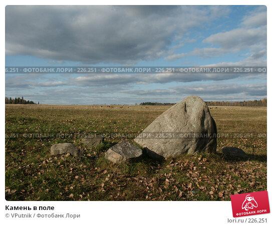 Камень в поле, фото № 226251, снято 8 октября 2005 г. (c) VPutnik / Фотобанк Лори