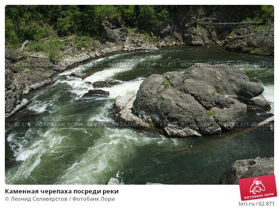 Каменная черепаха посреди реки, фото № 62871, снято 30 июня 2007 г. (c) Леонид Селивёрстов / Фотобанк Лори