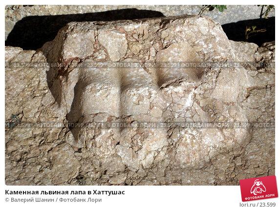 Каменная львиная лапа в Хаттушас, фото № 23599, снято 9 ноября 2006 г. (c) Валерий Шанин / Фотобанк Лори