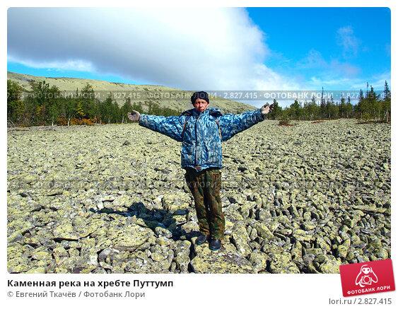 Каменная река на хребте Путтумп, фото № 2827415, снято 17 августа 2011 г. (c) Евгений Ткачёв / Фотобанк Лори