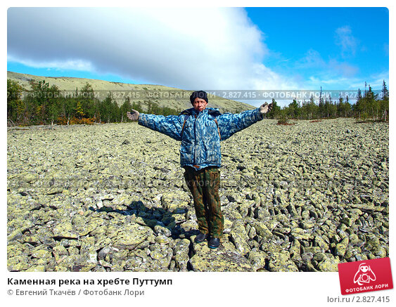 Купить «Каменная река на хребте Путтумп», фото № 2827415, снято 17 августа 2011 г. (c) Евгений Ткачёв / Фотобанк Лори