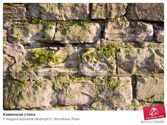 Каменная стена, фото № 234831, снято 16 августа 2017 г. (c) Андрей Щекалев (AndreyPS) / Фотобанк Лори