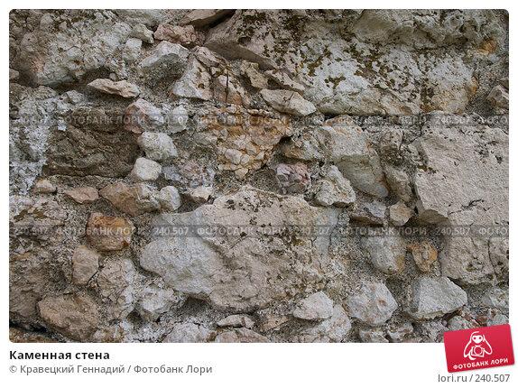 Каменная стена, фото № 240507, снято 25 января 2017 г. (c) Кравецкий Геннадий / Фотобанк Лори