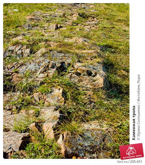 Каменная тропа, фото № 205651, снято 2 августа 2006 г. (c) Ирина Солошенко / Фотобанк Лори