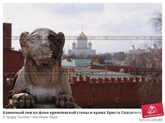 Каменный лев на фоне кремлевской стены и храма Христа Спасителя, фото № 229459, снято 15 марта 2008 г. (c) Sergey Toronto / Фотобанк Лори