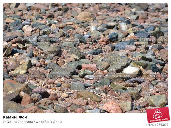 Камни. Фон, фото № 265027, снято 11 октября 2007 г. (c) Ольга Сапегина / Фотобанк Лори